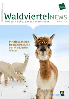 Winter.Auszeit in der Waldviertel News